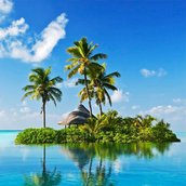 Tropical paradise Wallpaper