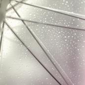 Rainy Day [LG Home]