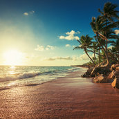 Paradise beach wallpaper
